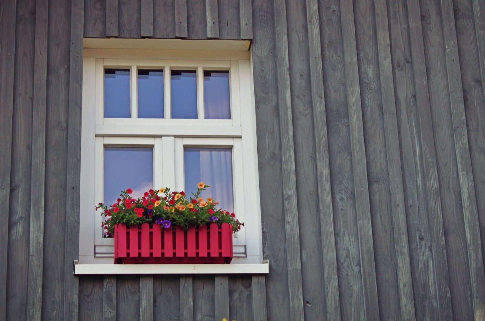 Window Replacement Tips